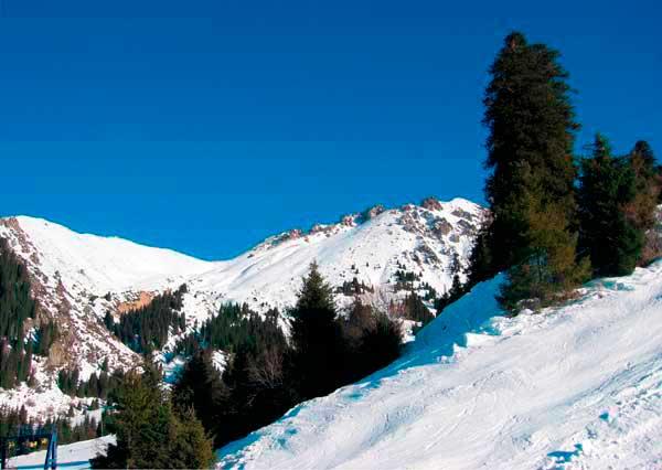 Природа Снежного