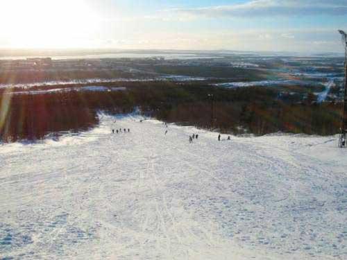Гора Воробьиная