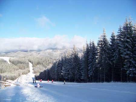 Гора Буковель