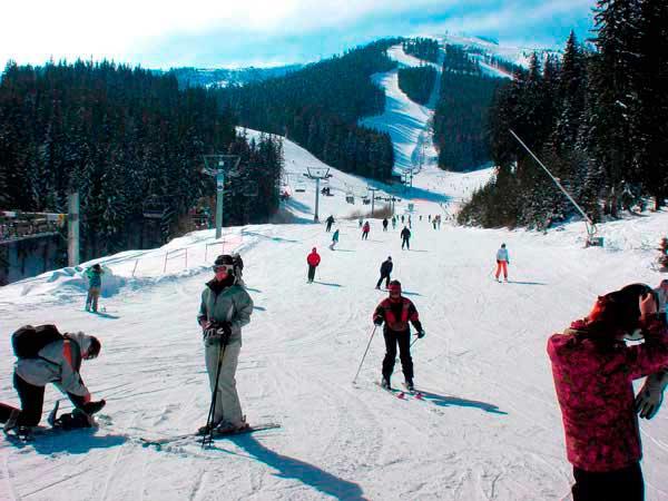 Трасса для начинающих лыжников