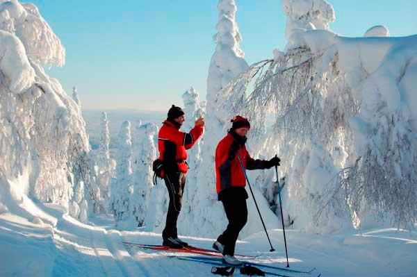Прогулка на беговых лыжах