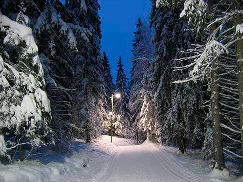 Тахко горнолыжный курорт Финляндии