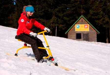 ski-fox