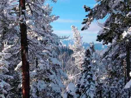 Гора соболиная Байкальск