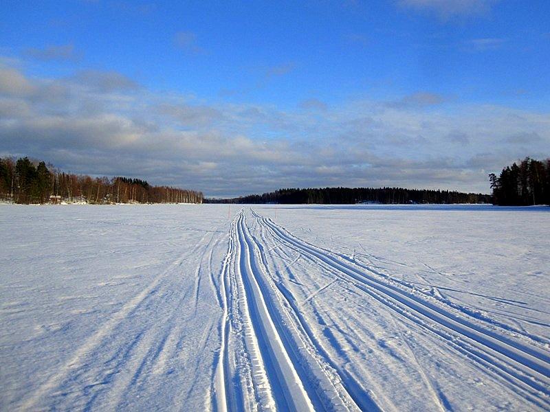 Лыжня.